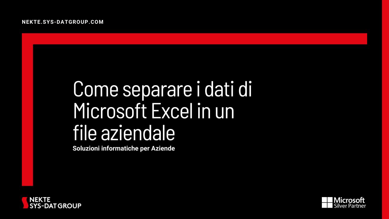 Come separare i dati di Microsoft Excel in un file aziendale